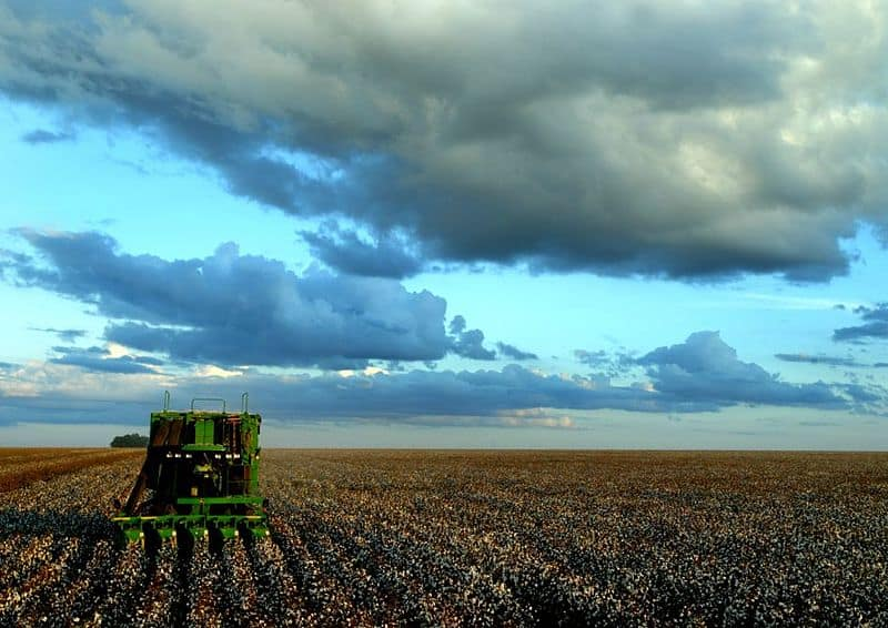 Brazil Refuses GMO Imports From United States