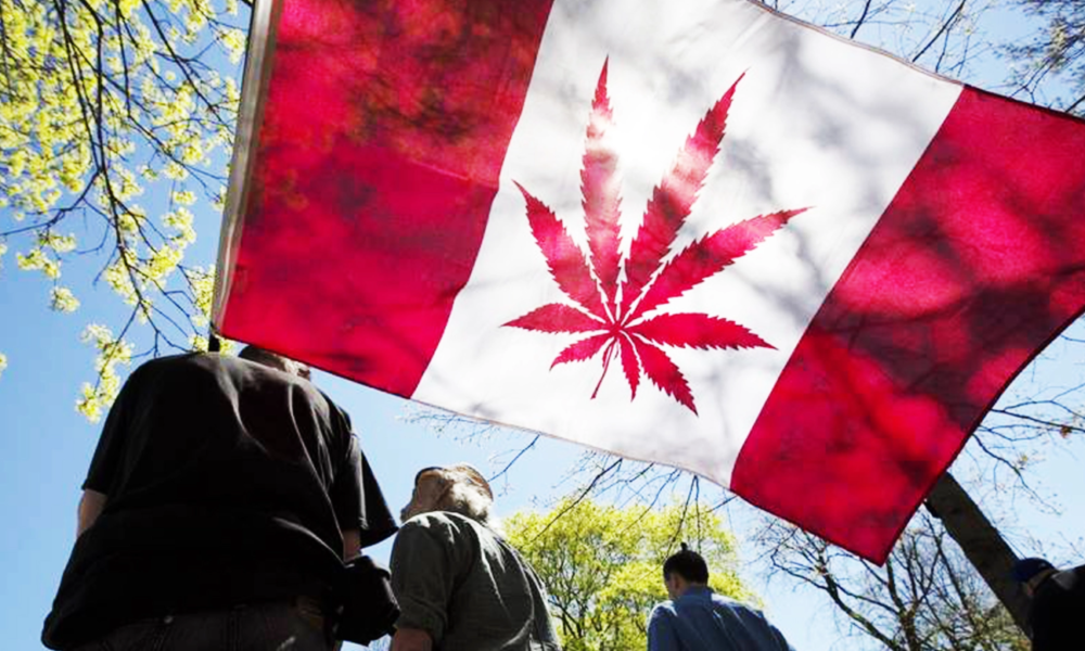 It's Official: Canada Moves To Legalize Marijuana Nationwide