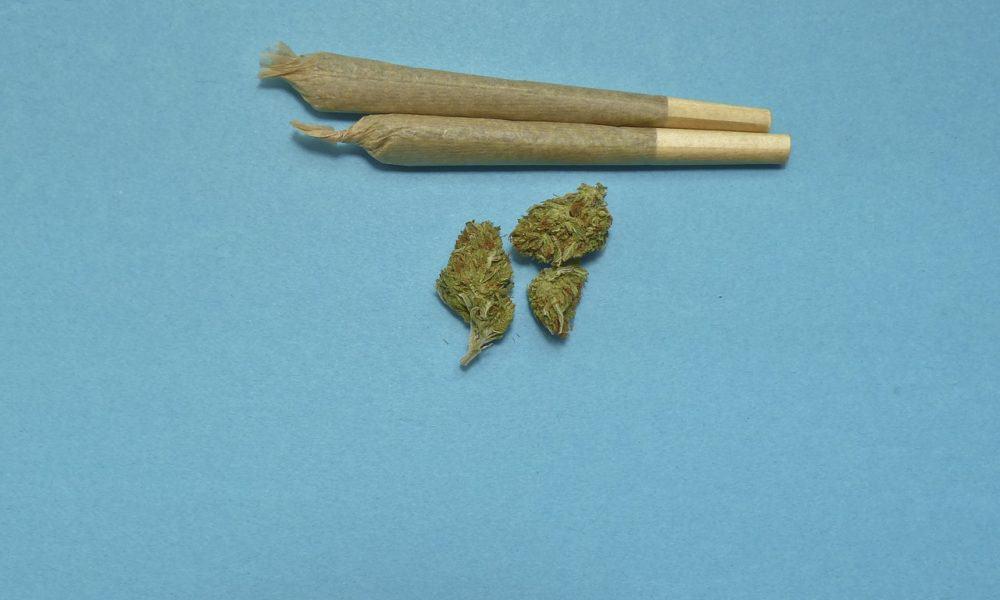 Liberal Democrat Manifesto: Marijuana Legalization Will Raise £1bn In Tax Revenue