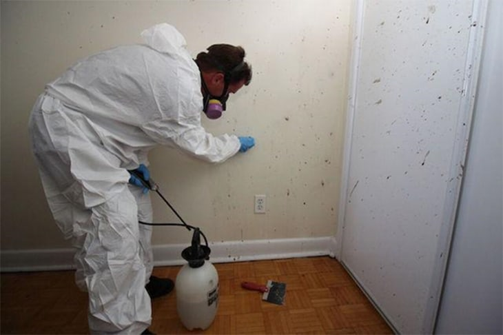 Crime Scene Cleanup Crew: A Noble Job No One Knows About